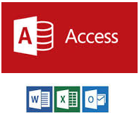 MS Access Developers